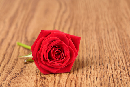valentine s day: Red rose on wooden background, love symbol