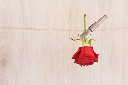s shape: Red rose hung on the rope a wooden background