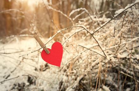 s shape: Heart shape on a snowy branch a winters day