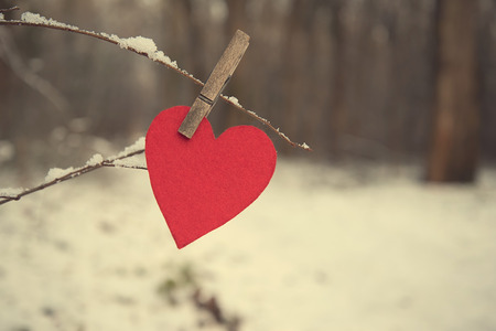 valentine s card: Heart shape on a snowy branch a winters day