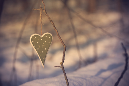 s shape: Heart shape hanging a branch in winter forest