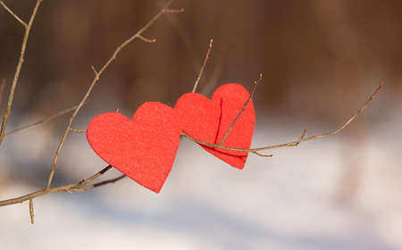 valentine s: Red heart shapes on snow a winters day