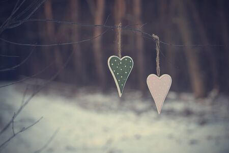s shape: Vintage photo of two heart shape in the forest Stock Photo