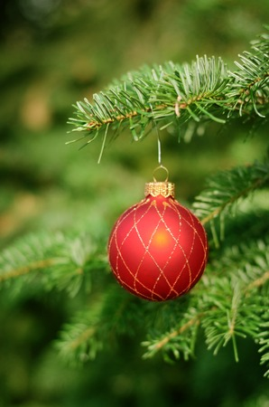 close   up: Christmas tree with decoration, detail