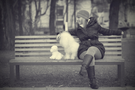 bichon bolognese: Dog with owner in the park, black and white photo