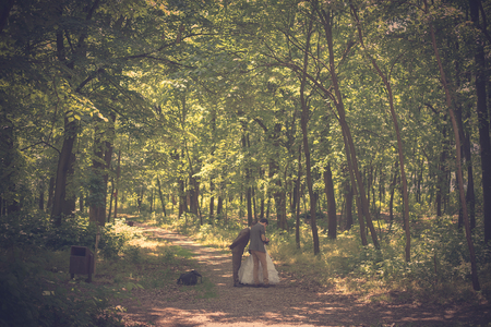 wedding photography: Wedding photography moment in the forest. Vintage view
