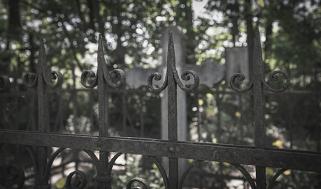 dearly: Ornate cast iron fence in the cemetery