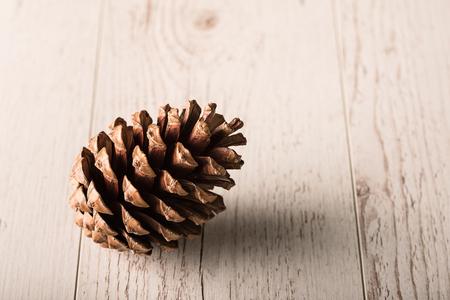 cedro: Cono del pino en un fondo de madera. Foto de estudio