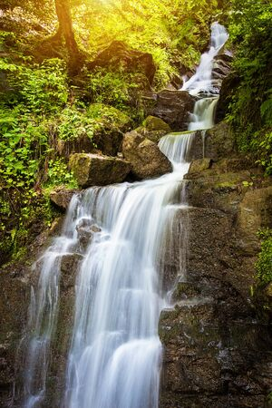 cascade: Landscape photo of forest stream waterfall in the green