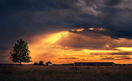 雨の後の美しい田園風景。暗いトーンの写真 写真素材