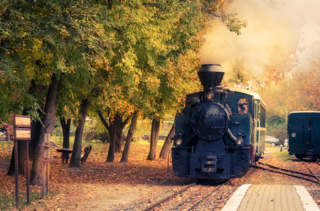 Steam powered train in the natural park Imagens