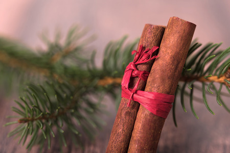 Pine branch with cinnamon on wooden background. Christmas concept