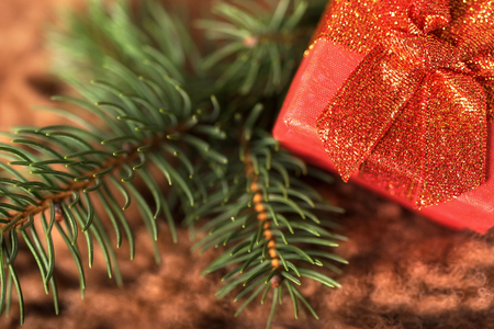 Red gift box and pine branch on brown fur background