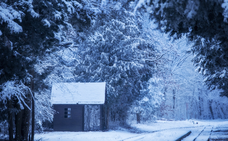 Small wooden house in the winter nature. Blue toned photo