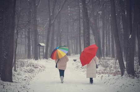 Two women walking in the winter forest in snowfall Stock Photo