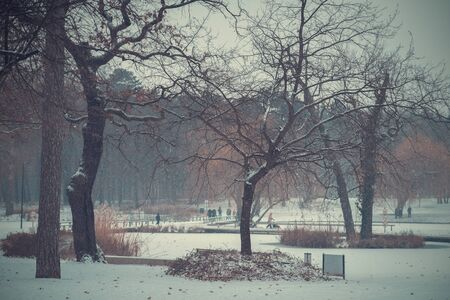 Landscape photo of a winters day. Vintage toned Stock Photo