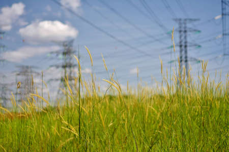 high voltage pylons in field photo