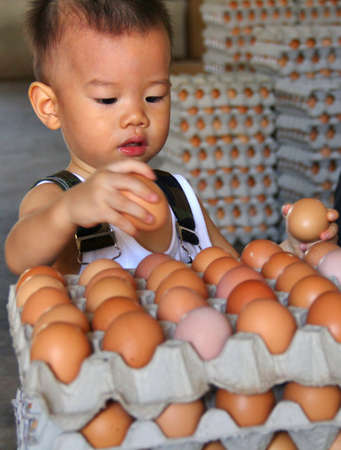 Asian baby counting eggs