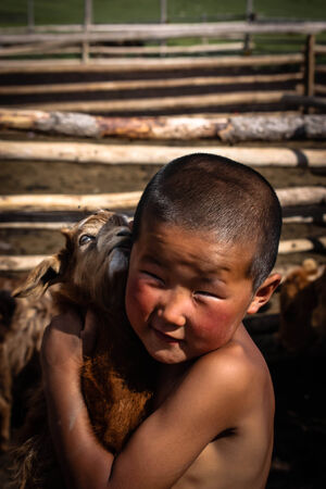 A nomadic mongolian boy with his baby goat