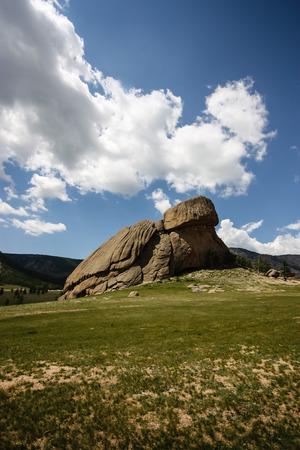 mongolia horse: Turtle Rock