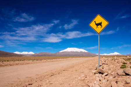 Llama road sign in Bolivia, Andes, South America