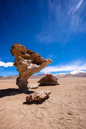 arbol: Arbol de Piedra o �rbol de Piedra ?, Bolivia