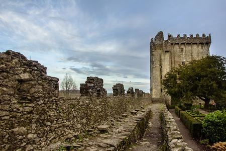 Blarney Castle Wall, Cork, Ireland