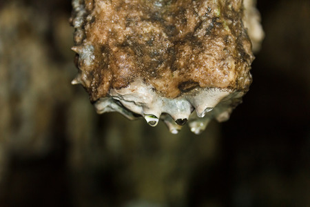 caving: Stalactite with water drop in dark cave.