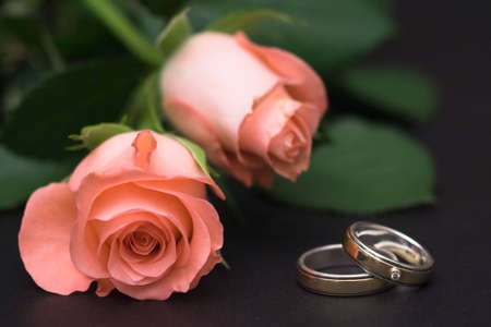 Two pink roses and a pair of wedding rings Stock Photo - 5794799