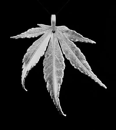 Japanese maple leaf in silver Stock Photo