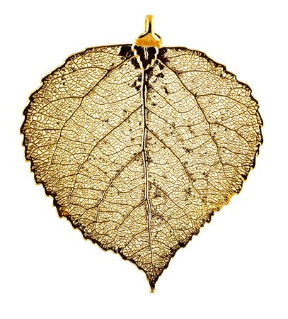 Real Aspen leaf necklace plated in gold