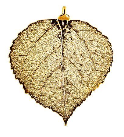 gold leaf: Real Aspen leaf necklace plated in gold
