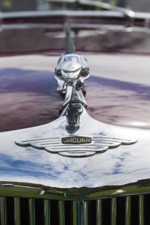 Jaguar car symbol  Image taken on Classic car show at Mooragh Park, Ramsey, Isle of Man on 1 July 2012  Stock Photo - 14407137