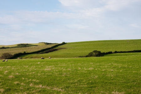 Photograph of countryside agriculture view