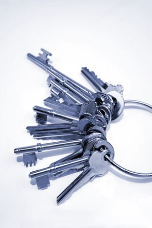 keyring: Keys on keyring Stock Photo