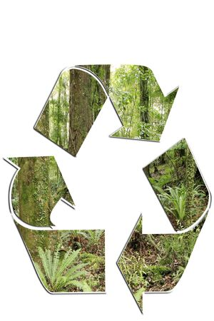 Recycling symbol on white background. Forest scene. photo