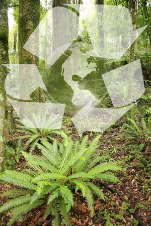 Globe, recycling symbol and forest scene. photo