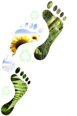 sustentabilidad: Medio ambientales huellas sobre fondo blanco.