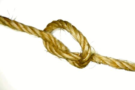 entwined: Knot in rope