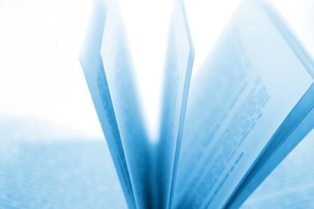 Closeup of open book pages Stock Photo - 11531762