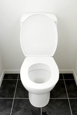 Closeup of toilet, lid open photo