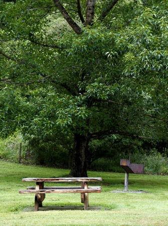 rural area: Picnic table and tree at rest area Stock Photo