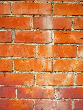 solid color: Closeup of bricks in wall