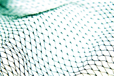 netting: Closeup of netting