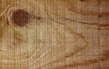Closeup of wooden surface photo
