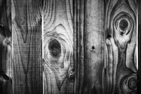 Closeup of grunge wooden wall photo
