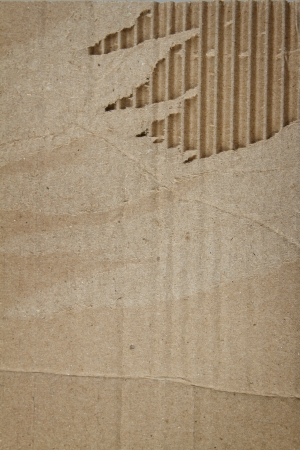 Ripped corrugated cardboard. Copy space photo