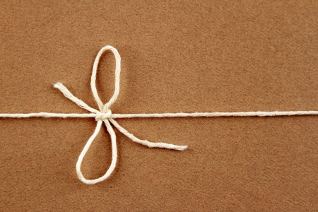 twine: Tied bow in string on brown parcel