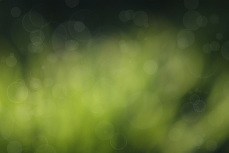 Soft focus circles on green abstract background Stock Photo - 15587395