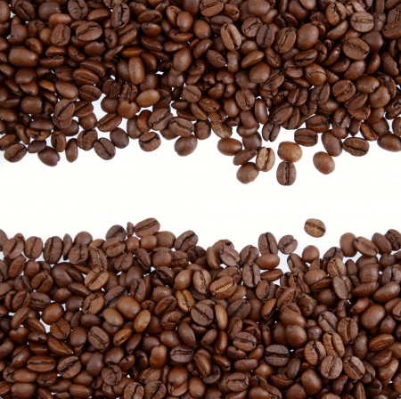 Closeup of coffee beans on plain background  Copy space photo